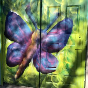 Pink and purple butterfly painted on a door with a green background in a lane way